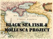 blacksea_Santangelo